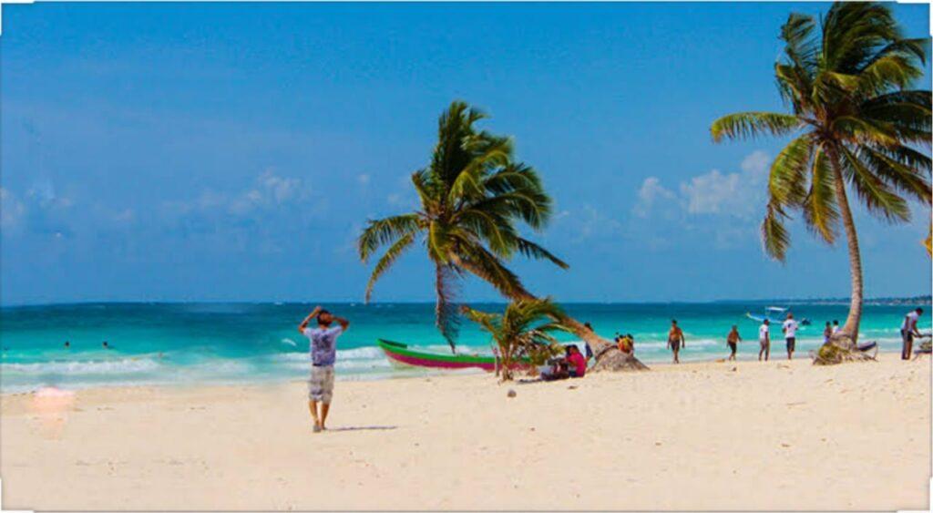 Coba Paraíso Cenotes puerto morelos tour agency