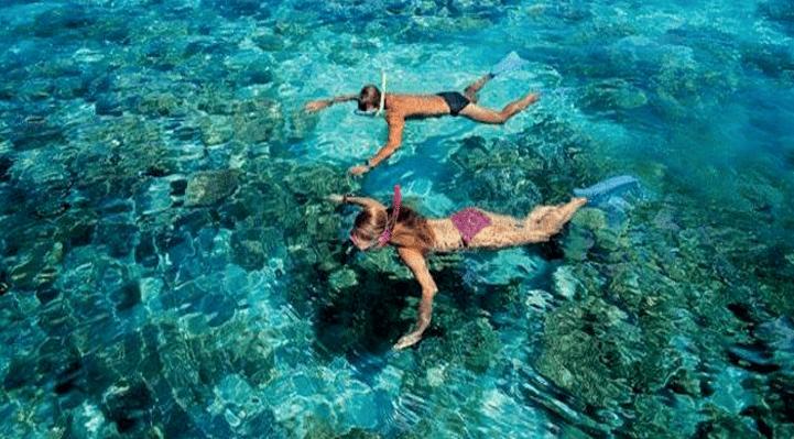 Best snorkeling tour in Puerto Morelos - Blog